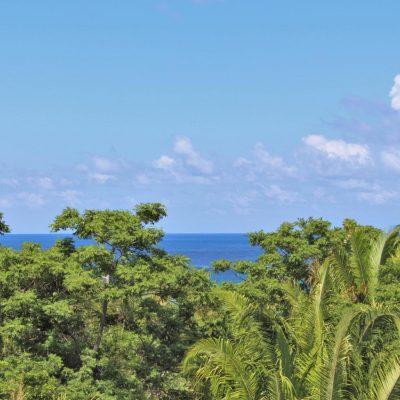 Incredible Value! 11.75 acres of ocean view land in Punta Gorda, Roatan