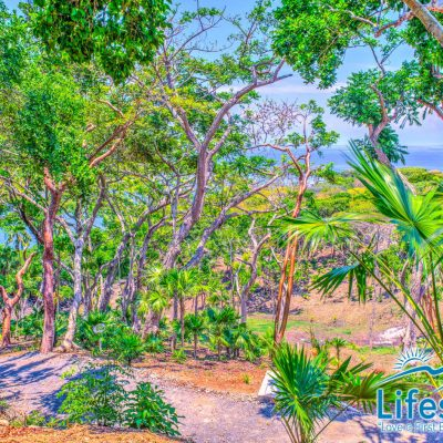 Lifestyle by Atocha Homesite with OceanView, Lot #2